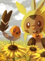 Sunflower by Aonik
