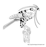 Messenger Hawk line art by Jeep-The-Dragon
