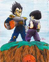 Vegeta and Gohan - Planet Namek Alternative color by SunnyDjoka