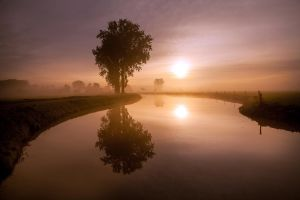 It's a foggy world today.........XV by Betuwefotograaf