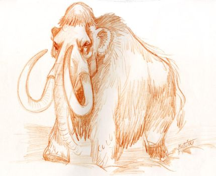 Wooly Mammoth by Sedeslav
