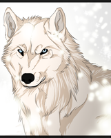 Winter wolf by Kulchir