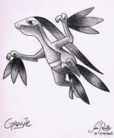 Grovyle by johnrenelle