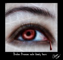 Broken promises, Bloody tears by NorthernLytes