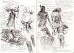 Nandor Elves studies by TurnerMohan
