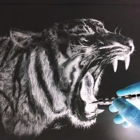 Inverted tiger drawing by annnelies