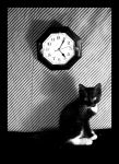 Black is the cat at five 03 by naraosga-stock