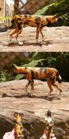 On The Move - Hunting Dog by kaasha