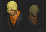 Sculpt - Sanji by ShawnnL
