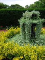 Fountain of Foliage by NamekAngelIvy