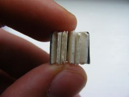 Mini Book by JamesDarrow