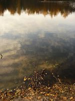 Autumn: Transparent Water by somnia-stock