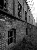 Wall of broken windows by dafour