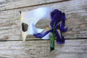 Iris mask for Halloween wed1 by SilverCicada