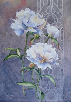 Peonies. by lazygirl-29