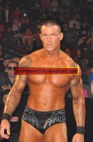 Raw After WM25 13 by boomboom316