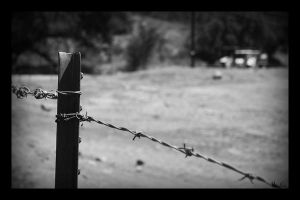 Barbed.Wire by MasterC88