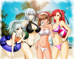 Valkyria Chronicles - Valkyrian Summer by iforher