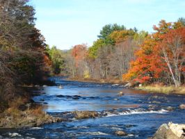 Oct 2008 on the Contoocook 2 by crazygardener