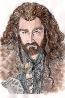 Thorin Oakenshield by nuriwan