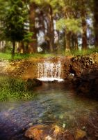 Pond Background 3a by GoblinStock