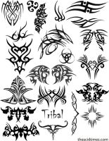 Tribal Brush Set 1 by AcidaSeee