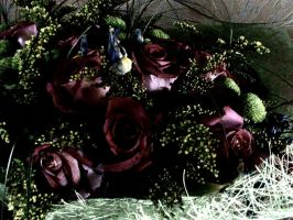 Flowers in dark by Mary-Alice29
