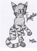 confuzzled Jayfeather by Icewhisker16