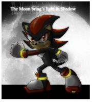 Shadow in fullMoon by EvilKitty3