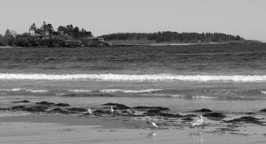 Black and White Beach 2 by TakingBackSusan
