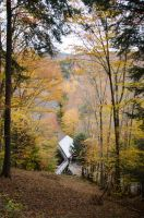 White Mountains  Fall Foliage  102 by FairieGoodMother