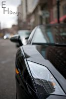 Lambo Close Up by BonaFideChimp