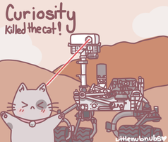 Curiosity Killed the Cat by Turkey-Wang