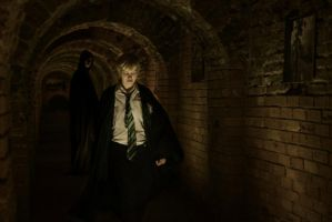 The Slytherin Dungeon by B1802