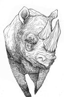 Rhino 01 by RobDuenas