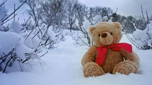 Teddy bear by Juelej