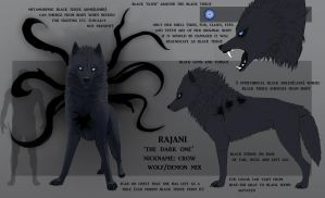 Rajani Ref. Sheet by maccarta