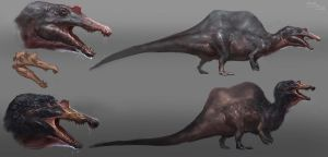 Spinosaurus concept sketches by Raph04art