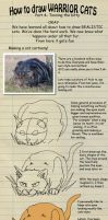 How to draw Warrior cats pt 4 by heylorlass