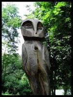 The wooden Owl by jibirelle
