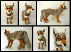 Western Coyote by SarityCreations