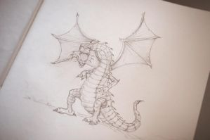 Dragon Sketch by coloringsilence