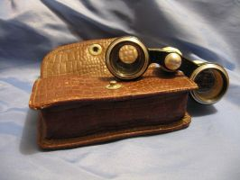 Binoculars and Leatherbox 4 by BlackWolver-STOCK
