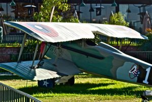 Replica of a Spad? French. by jennystokes