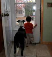 A boy and his dog by olearysfunphotos