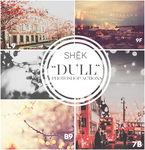DULL Photoshop Actions|Photo Effects by ShekFilters