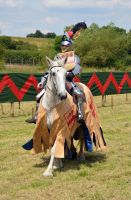 Kenilworth Castle Joust 2014 (65) by masimage