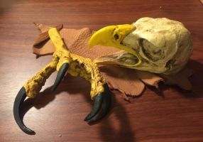 Replica Eagle claw and open mouth Eagle Skull SOLD by lamelobo