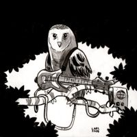 Rock Owl by larsony