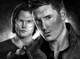 Winchesters by LugaruGrey